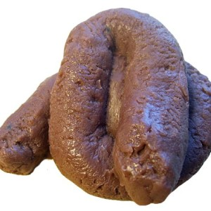 Doggy-Doody-Fake-Dog-Poop-Handcrafted-Soap-0