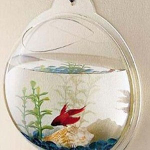 Iseebiz-Wall-Mounted-Hanging-Acrylic-Fish-Tank-Aquarium-Bubble-Multifunction-Fish-Bowls-0